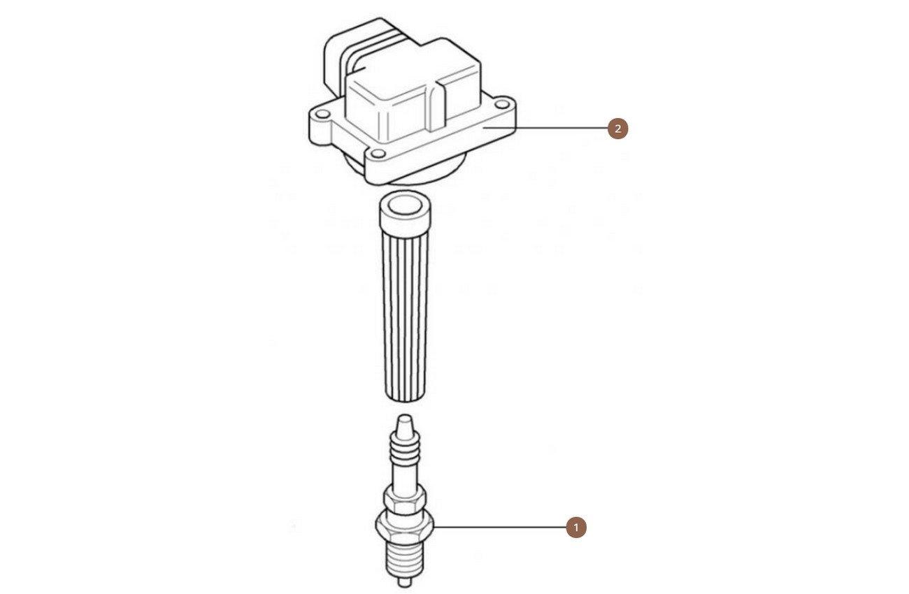 Spark Plugs & Coils