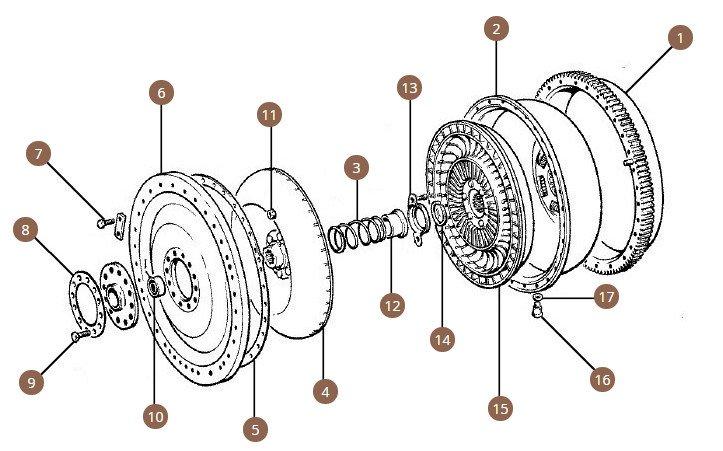 Torus & Ring Gear